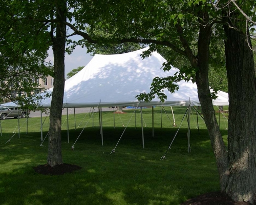 White pole tent setup under trees