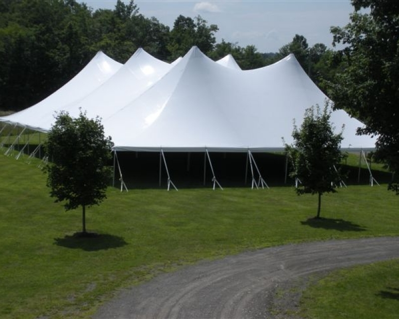 Large double pole tent