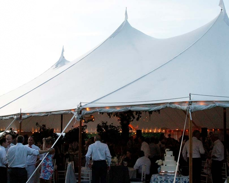 guest gather around wedding tent