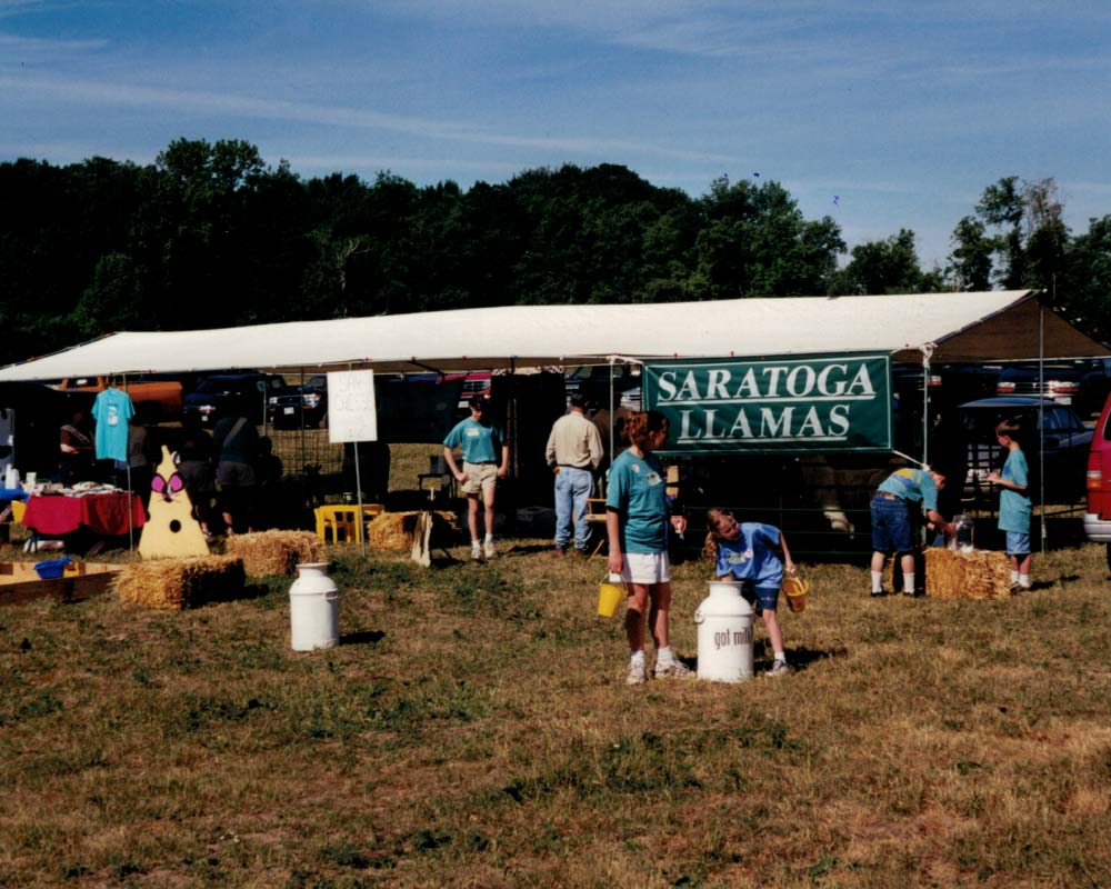 frame tent with Saratoga Llamas banner